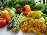 Καλλιέργεια κηπευτικών με Ενεργούς Μικροοργανισμούς