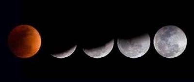 Πώς η Σελήνη επηρεάζει τα φυτά;