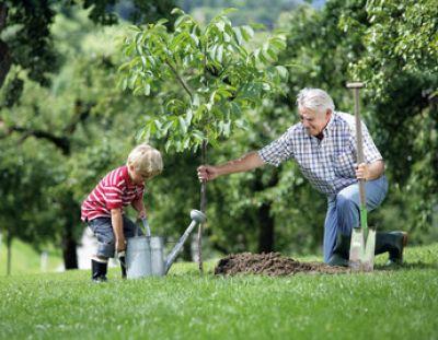 Κηπουρική και Ενεργοί Μικροοργανισμοί