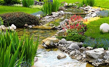 Κήπος - Γκαζόν